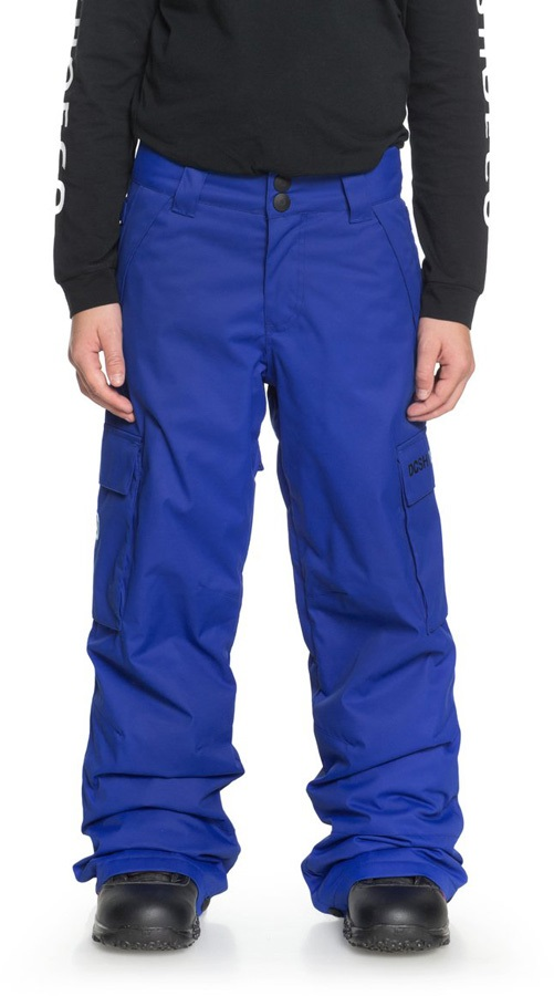 DC Banshee Youth Kids' Ski/Snowboard Pants, XXL Surf The Web